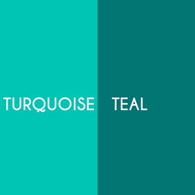 Turquoise/Teal